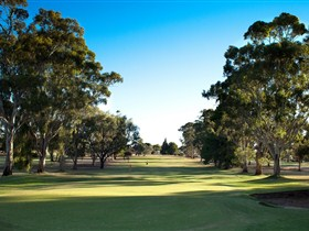 Loxton Golf Club - Pubs Perth
