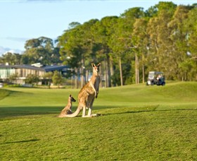 Sanctuary Cove Golf and Country Club - Pubs Perth