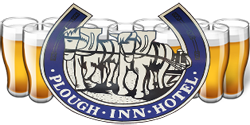 Plough Inn Hotel - Pubs Perth