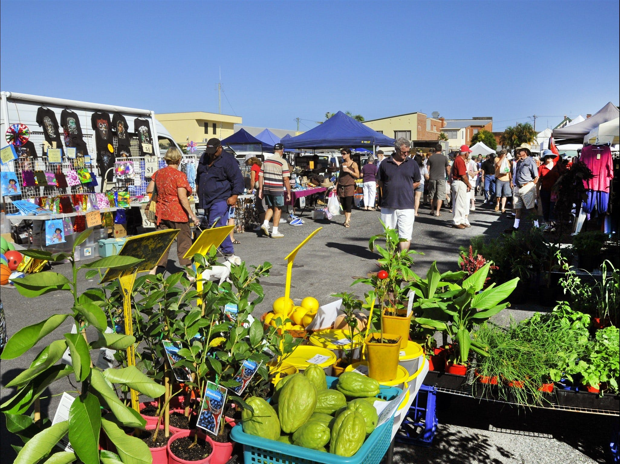 Maclean Community Monthly Markets - Pubs Perth