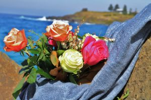 Roses by the Seaside National Rose Championships and Conference - Pubs Perth