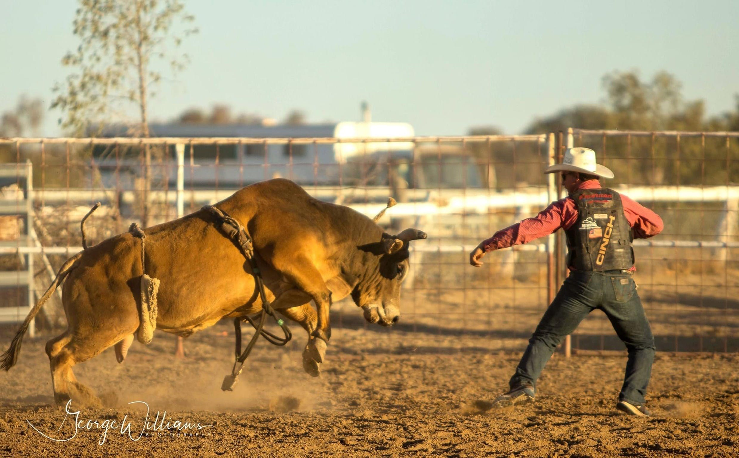 Walgett Charity Bushman's Carnival Rodeo and Campdraft - Pubs Perth
