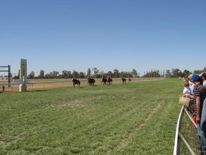 Balranald Races -Derby Day - Pubs Perth