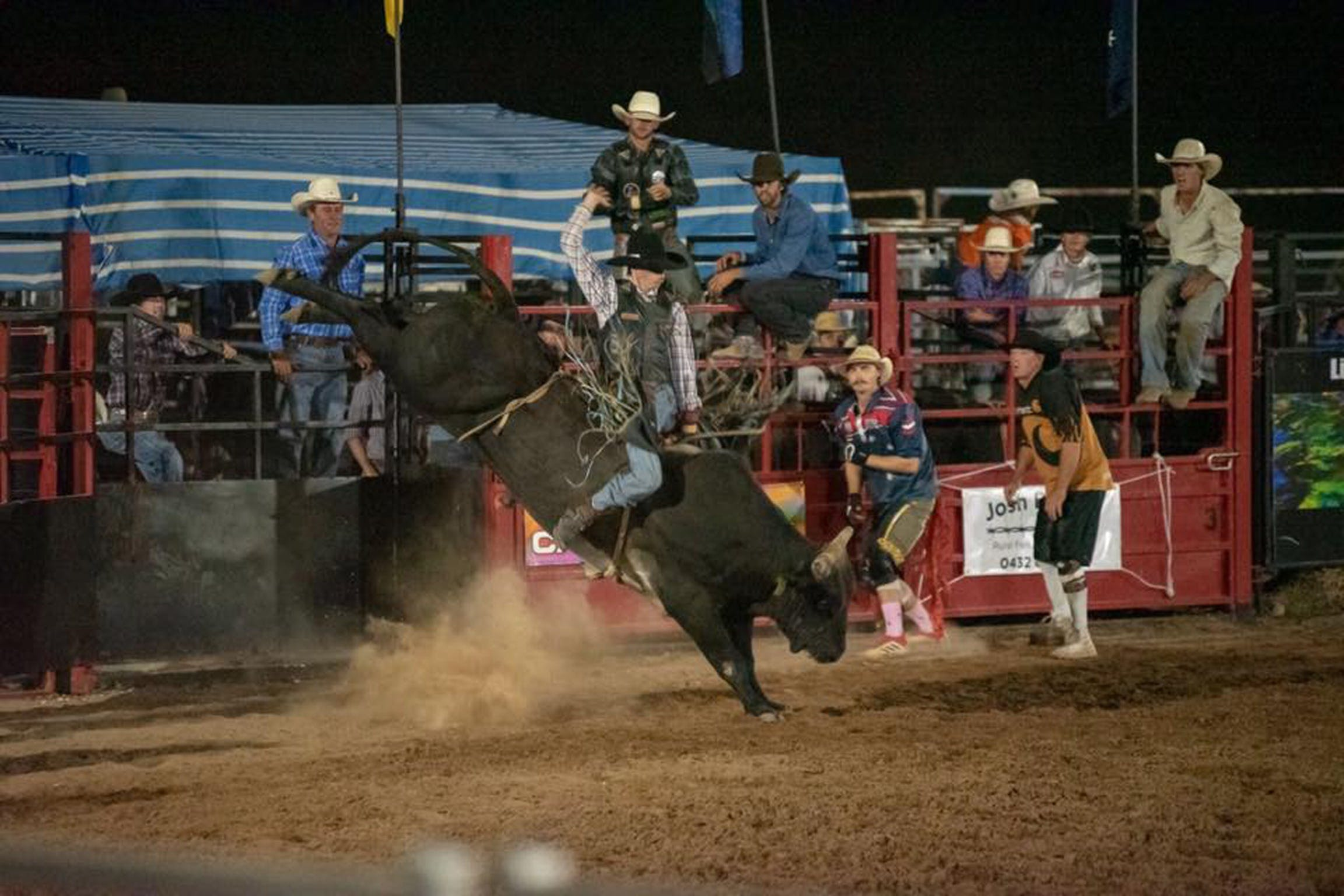 Black Opal Bull and Bronc Ride - Pubs Perth