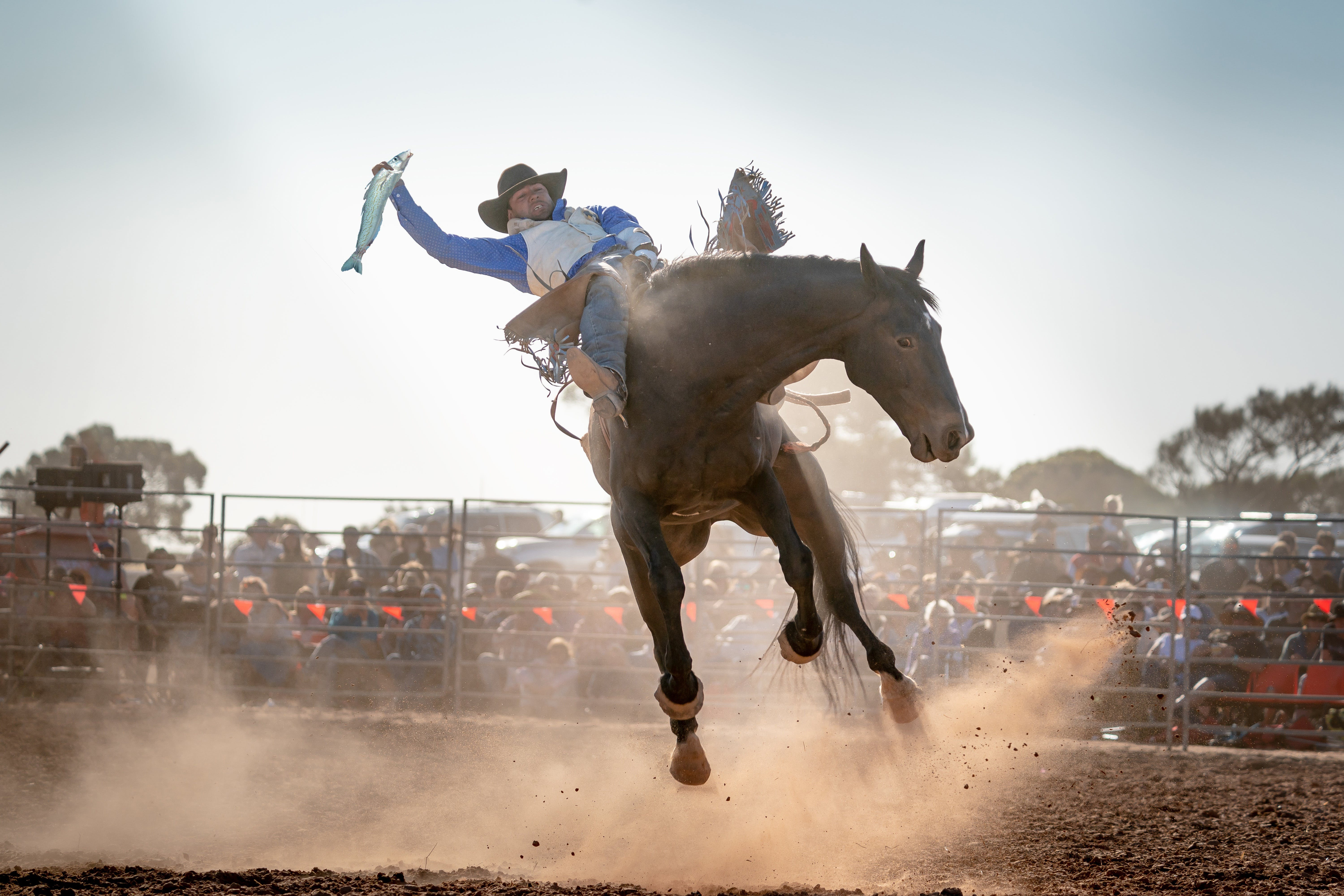 Rodeo by the Sea - Streaky Bay - Pubs Perth