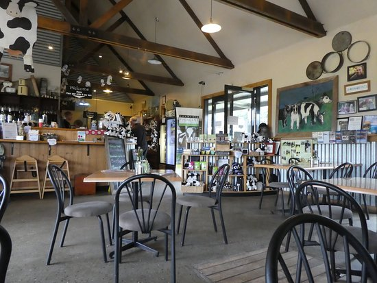 Holy Cow Cafe - Pubs Perth