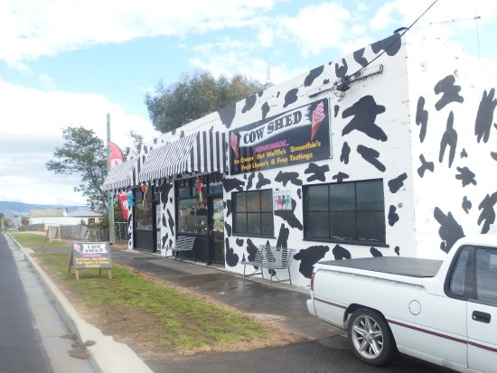 The Cow Shed - Pubs Perth